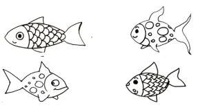 poissons modèles